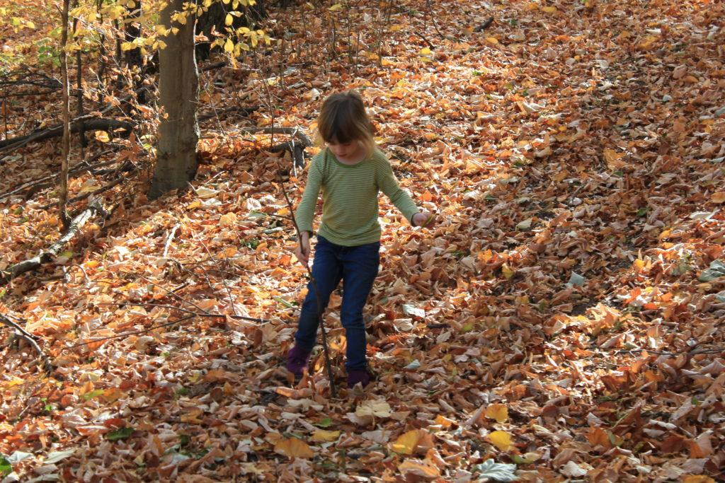 locuri frumoase de vizitat în județul Buzău cu copiii