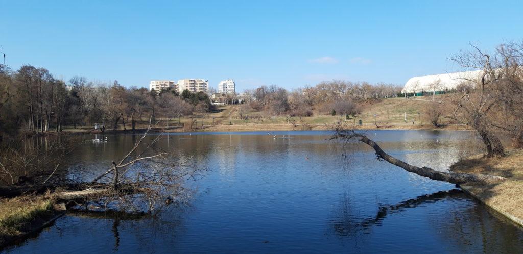 Plimbare în mijlocul naturii urbane